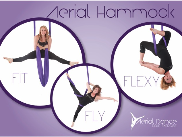 Aerial_Dance_Facebook_Ad-Fit,fly,flexy1