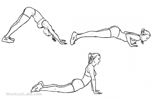 dive_bomber_push-up_f_workoutlabs