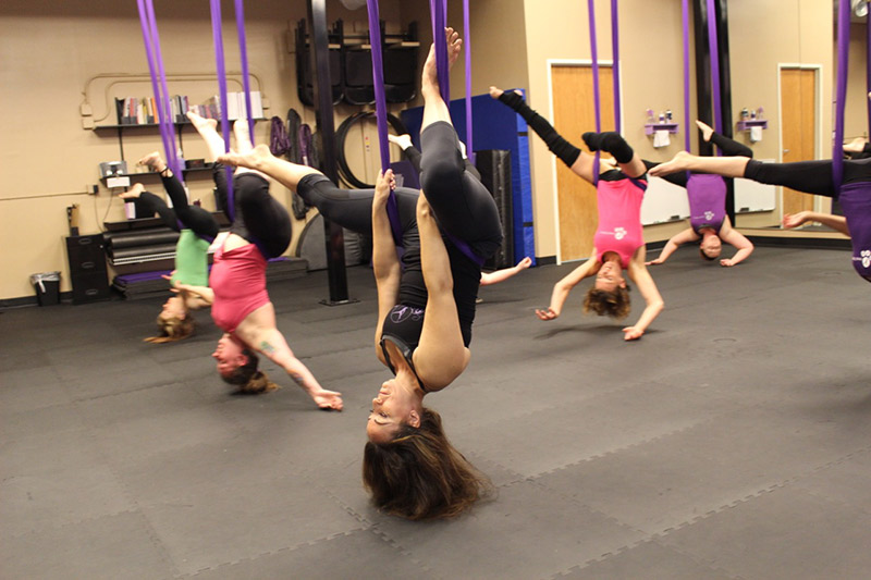 frequently asked questions beginner hammock class schedule   aerial dance pole exercise  rh   aerialdancepoleexercise